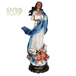 Imagem Nossa Sra. Imaculada Conceição 20cm Resina Importada