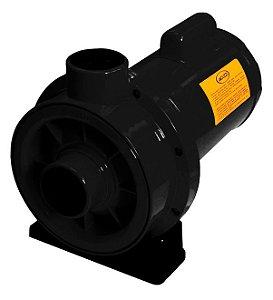 Bomba Centrifuga Jacuzzi Monoestagio Jq 3jq-M 1/3cv Mono 127/220v
