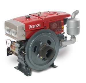 Motor A Diesel Branco Bda-22.0 Rae 22cv Refrigerado a Agua Partida Eletrica