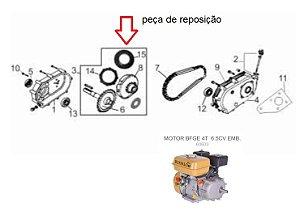 Disco Fricção de Embreagem 6797 P/ Motor Bfg Bfge 6.5cv Buffalo