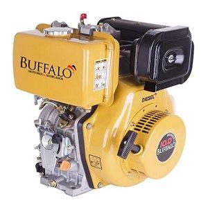 Motor Buffalo Diesel Bfde 10cv Filtro De Ar A Seco P. Eletrica