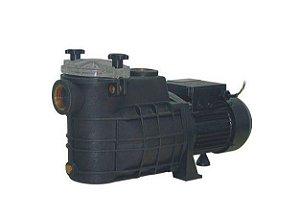 Bomba de Água para Piscina TSW-250 1/3cv Monofásica Bivolt 127/200v Ebara
