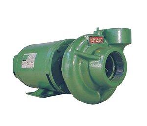 Bomba De Agua Thebe Thl-13 1,5 Cv Monof.Ip21.127/220-254v