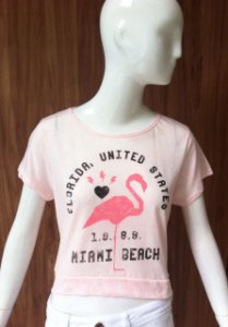 BLUSA CROPPED FLAMINGO LILIMOON