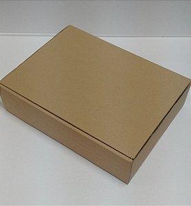 CAIXA KLAPEX 40X30X10 C/ 250