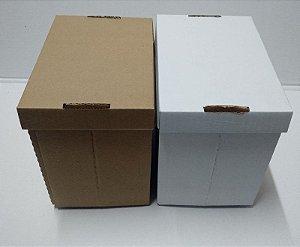CX SORVETE 5 LITROS PLASTIFICADA  - COM 300 CAIXAS
