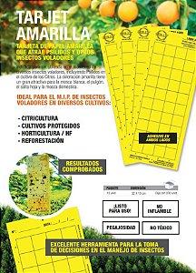 Kit com 10 armadilhas para Fungus Gnats e Moscas