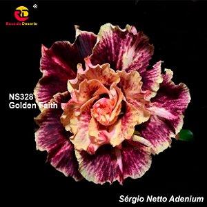 Enxerto Rosa do Deserto com flor tripla importada - Golden Faith