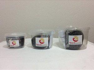 Kit completo para germinação com 10 sementes