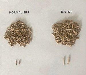 BIG SIZE - Kit com 50 sementes de flor simples na cor rosa para produção de cavalos para enxertia