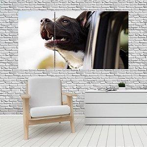 Quadro Mosaico Decoração Animal 121x65 com 3 Peças Mod 17