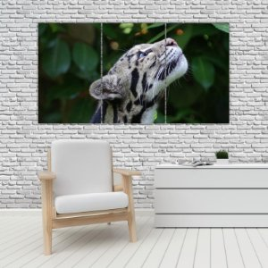Quadro Mosaico Decoração Animal 121x65 com 3 Peças Mod 24