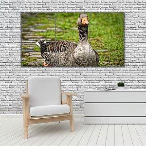 Quadro Mosaico Decoração Animal 121x65 com 3 Peças Mod 42