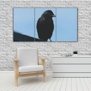 Quadro Mosaico Decoração Animal 121x65 com 3 Peças Mod 48
