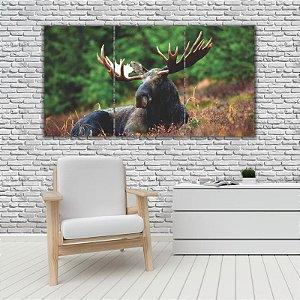 Quadro Mosaico Decoração Animal 121x65 com 3 Peças Mod 49