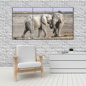Quadro Mosaico Decoração Animal 121x65 com 3 Peças Mod 63