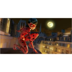 Painel em Lona Ladybug 04
