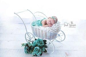 Carrinho newborn  fotografia newborn props ArteBrasil
