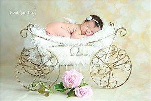 Carruagem aberta o.e fotografia newborn descoração ArteBrasil