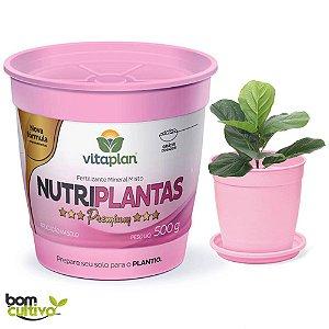 Fertilizante Mineral Nutriplantas - 500 Gramas