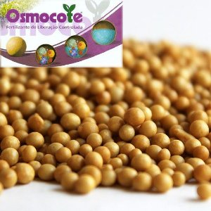 Fertilizante Osmocote 19-06-10 / 3-4 meses - Embalagem 1Kg