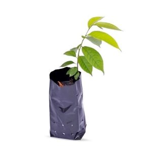 Saco Plástico Preto para Mudas 18 x 25 x 0,15 - 1Kg - 148 Unidades