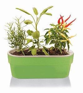 Jardineira Auto Irrigável Hortinha Cor Menta