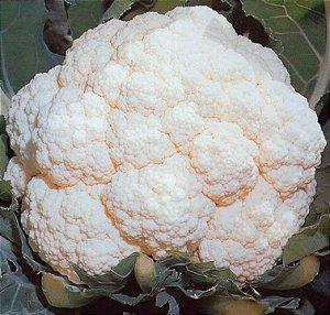 Sementes Couve Flor Piracicaba Precoce - Envelope 40gr