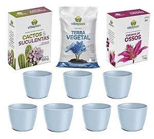 Kit para Plantio de Suculentas