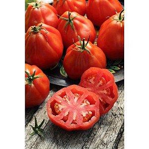 Sementes Tomate Coração-de-Boi - Envelope 3 Gr