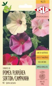 SEMENTES DE IPOMEA PURPUREA SORTIDA/CAMPAINHA 1GR