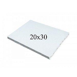 Tela para Pintura 20 X 30