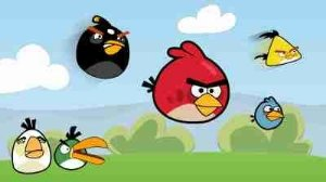 Angry Birds 06