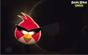Angry Birds 31