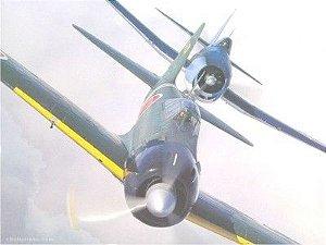 Avião 02