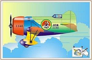 Avião 11