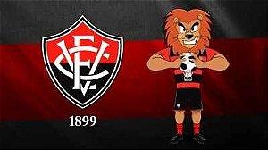 Vitoria Esporte Clube 01