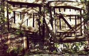 Casa Abandonada 02
