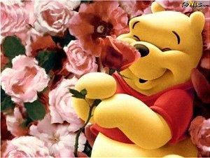 Ursinho Pooh 29