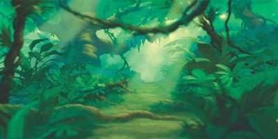 Floresta sem animais 10
