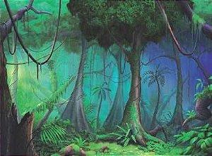 Floresta sem animais 11