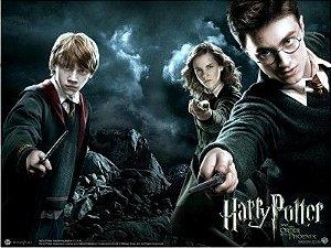 Harry Potter 06