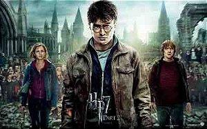 Harry Potter 13