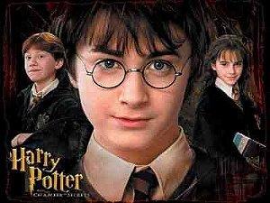 Harry Potter 18