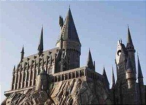 Harry Potter 19