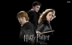 Harry Potter 22