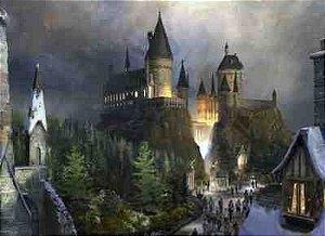 Harry Potter 26