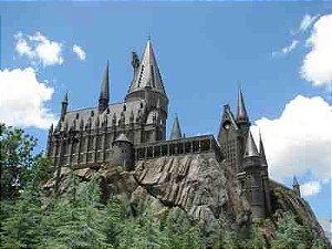 Harry Potter 28