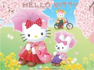Hello Kity 20