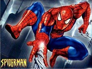 Homem Aranha 02
